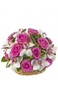 Флорална експресия