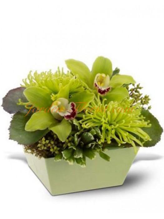 Екстравагантна аранжировка от орхидеи