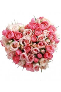 Сърце от рози микс